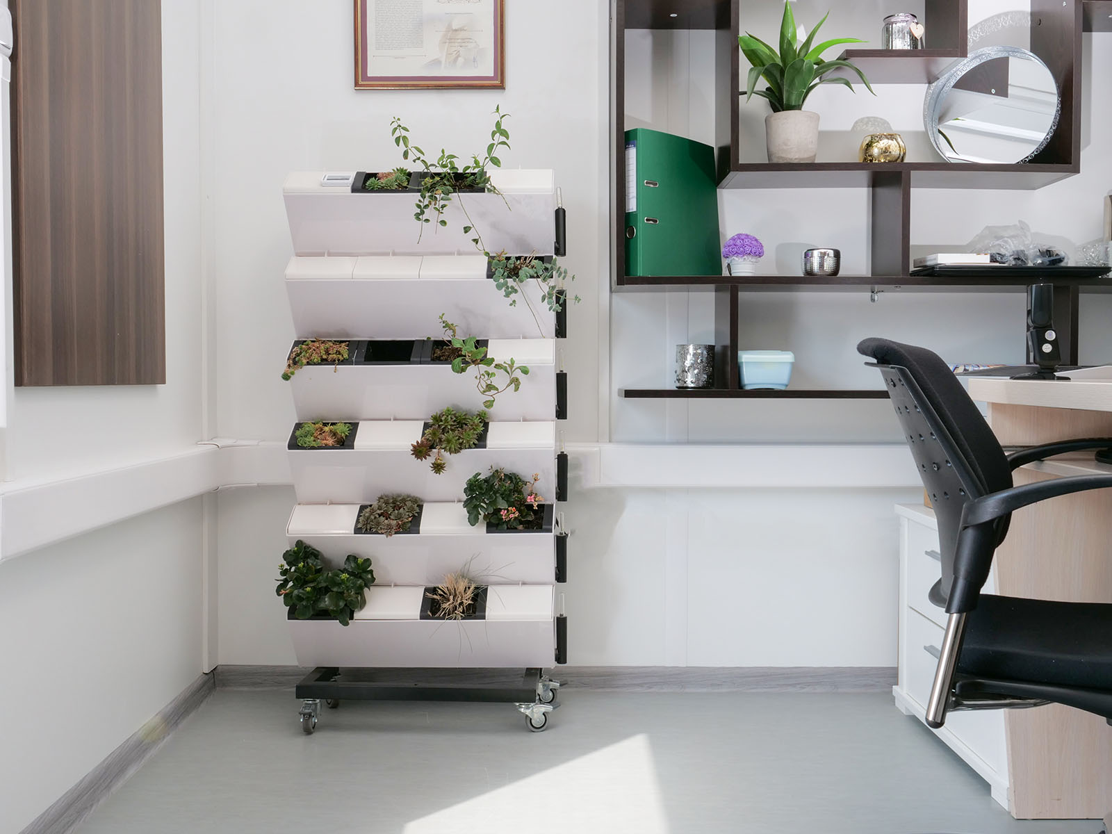 Az irodák monoton hangulatát könnyen megtörhetjük a virágzó és zöldellő növényekkel.