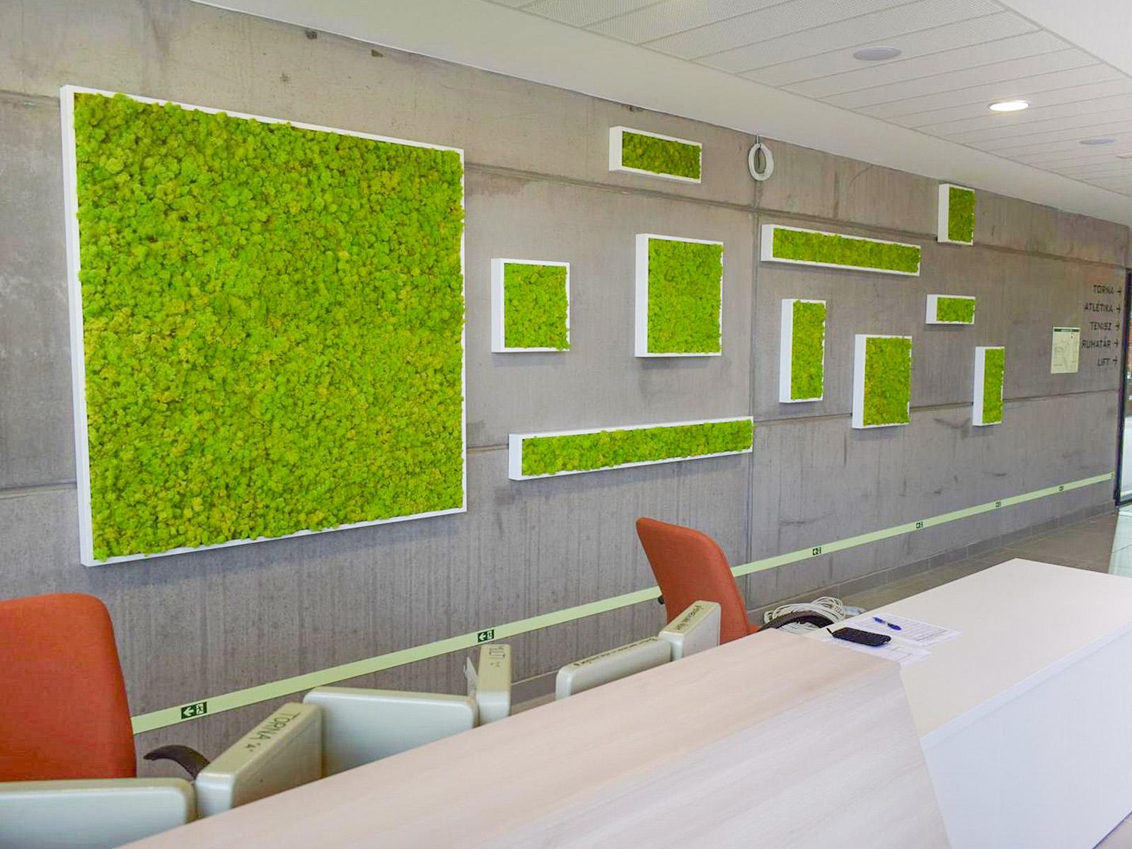 Zuzmó dekoráció különböző méretű képkeretekben munkahelyi folyosón.
