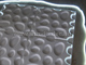 WallArt 3D Falpanel - Pebbles (kavicsok) - WallArt Kifutó!