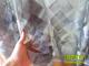 Organza függöny rombusz mintás (280x250 cm) - Antracit