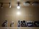 V-TAC LED lámpa G9 (4W/150°) természetes fehér - Utolsó!
