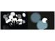 EMOS LED fényfüzér (6W/100 LED) hideg f., gömb, beltéri