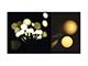 EMOS LED fényfüzér (6W/100 LED) meleg f., gömb, beltéri