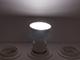 MODEE LED lámpa GU10 (5W/60°) hideg fehér