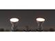 MODEE LED lámpa GU10 (7W/110°) meleg fehér, plastic