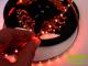 LED szalag beltéri (3528-60-BN) - piros