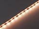 Kanlux LED szalag beltéri 2835-60 (12 Volt) - meleg fehér - Edison Chip - 5 m