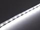 Special LED LED szalag beltéri 2835-64 (24 Volt) - hideg fehér (160+lm/W) Kifutó!