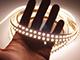 Special LED LED szalag beltéri 3528-120 (24 Volt) - CCT változtatható színhőm Kifutó!