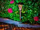 Nortene Eden leszúrható, kerti, napelemes szolár LED lámpa - barna