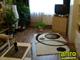 Shaggy szőnyeg 3 cm-es, (700A) Krém 160x220 cm