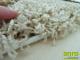 Shaggy szőnyeg 5 cm-es, (0211A) Krém 200x300 cm
