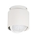 Kanlux Falra szerelhető spot lámpatest Sonor, kerek (12 Volt, AR111)