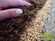 Shaggy szőnyeg 3 cm-es, (0196a) 3D Krém 80x250 cm