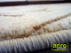 Kevert szálú, nyírt szőnyeg (0249c) Krém 80x250 cm