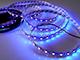 ANRO LED LED szalag beltéri 5050-60 (12 Volt) - UV (ultraibolya)