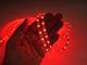 V-TAC LED szalag beltéri 3528-60 (12 Volt) - piros DEKOR!
