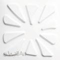 3D Falpanel - Caryotas (pálmalevél) - WallArt