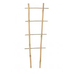 Bambusz növényfuttató létra, 2 tagú (60 cm) 100%-ban természetes bambusz