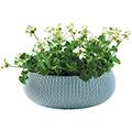 Cozy L műanyag virágláda - fém kék