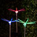 Szitakötő, kerti szolár LED lámpa