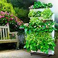 - Hordozható függőleges kert (115cmx57cmx22cm) zöldfal