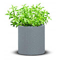 Small cylinder planter műanyag virágláda - ezüst szürke