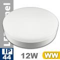 Kültéri mennyezeti LED lámpa kör (12 Watt) - meleg fehér