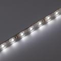 LED szalag kültéri 3528-60 (12 Volt) - hideg f. DEKOR! 5 méter