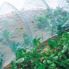 Védőháló rovarok ellen, Biocontrol rovarháló 18 g/m2 (2.2x10 méter)