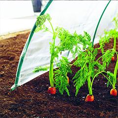 Kerti fólia növények termesztéséhez, Climafilm, 50 mikron vastag (2x5 méter)
