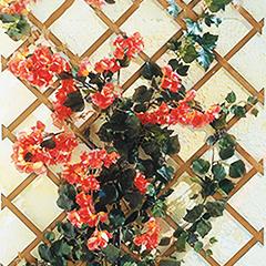 TrelliWood növényfuttató fa apácarács (50x150 cm) keskeny léc, fenyő szín