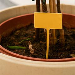 Label 13 cm-es, műanyag, sárga, leszúrható jelölőtábla növényhez, palántához (10 db) Ajándék filccel!
