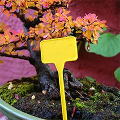 Label 15 cm-es, műanyag, sárga, leszúrható jelölőtábla növényhez, palántához (10 db) téglalap
