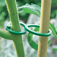 TomatoClips műanyag növénykapocs, paradicsomcsipesz (25 db) zöld
