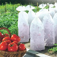 Kertészeti fóliatömlő paradicsom neveléshez, TomaTex, 17 g/m2 PP szövet (0.6x10m)